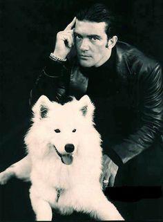 Antonio Banderas + dog.