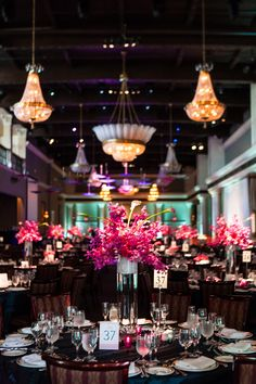 Love the contrast between the dark back drop/table cloth and the bright purples, oranges and fuschias of the flowers