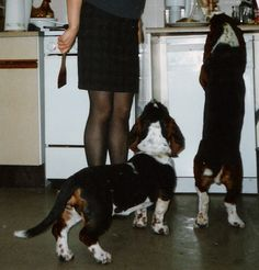 Monty and Purdy and Mrs 2 Knees