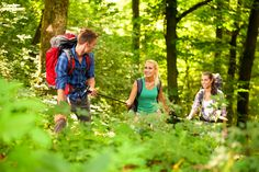 mountain outdoor, mountain adventur, famili, smoki mountain, friend, treat
