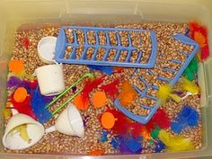 Sensory table for fall - turkey feathers & beans