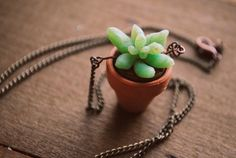 Planter Succulent Necklace by Run2theWild on Etsy $18.50