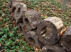 These old tree stumps into a garden wall, cool.