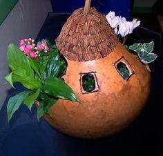 fairy-gourd-005.jpg (2011×1932)