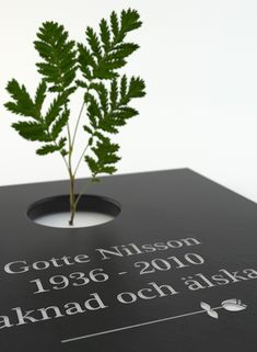 A headstone that makes room for new life. I love this idea!