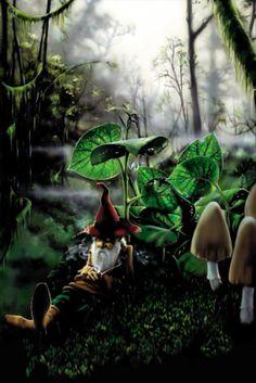 Chillin Gnome