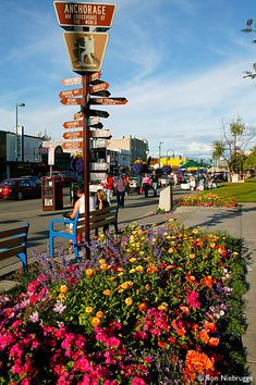 Downtown Anchorage in the summer, Alaska