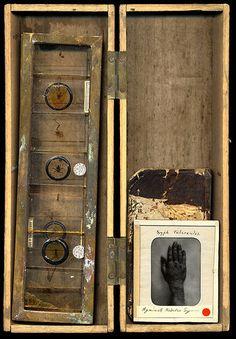 curiosity-box by Otto & Basil, via Flickr