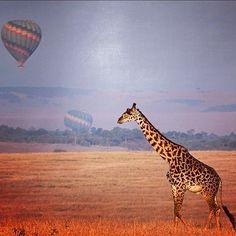 Reach for the morning sky at Four Seasons Safari Lodge, Serengeti, Tanzania, opening late 2012.