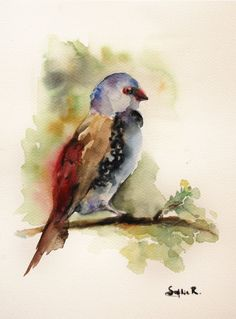 Original Watercolor Painting of  Bird on the Branch.