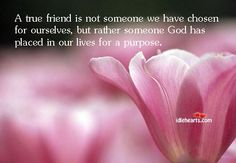 Encouragement For Everyday Struggles: Do You Need A Friend