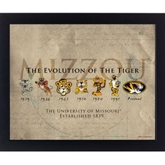 to hang on the wall with my mizzou stuff; $9.99