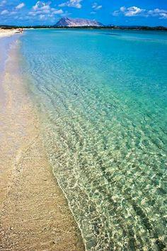 La cinta beach snd tavolara.  #Sardinia