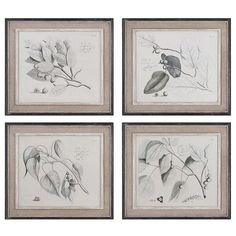 I pinned this 4 Piece Framed Sepia Leaf Study from the Old World Romance event at Joss and Main!