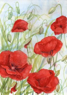 Original watercolour painting of poppies