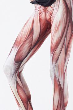 Muscle Leggings, Exposed Leg Muscle Flesh Fashion Leggings