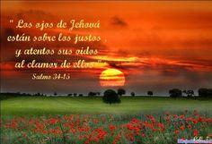 Los ojos de Jehová están sobre los justos y atentos sus oidos al clamor de ellos. Salmos 34.15