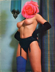 Linder, The Paradise Experiments: boudoir II, 2006 artists, modern art, collag montag, linder sterl, art direct, the artist, magazin, contemporari collag, spotlight
