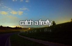 Catch a firefly.