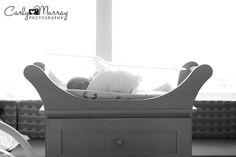 My baby!!!!!  Maine Fresh 48 Photographer | Carly Murray Photography