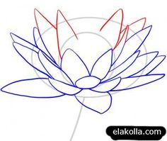 How to Draw - Tutorial: Drawing a Lotus or Water Lily for Comic / Manga Panel Design Reference