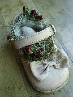 A nest in a baby shoe