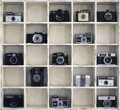 Display my antique camera collection.