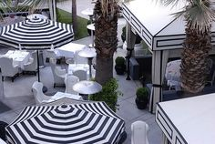 Viceroy Santa Monica's Black and White Umbrellas #design #hotels