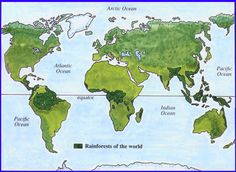 History (weeks 14-17) Geography: S. America, Mesoamerica, Africa, S. Asia    Interactive Map of Rainforests and Jungles. Click on the areas and more information will pull up. Real pictures of each area, also.