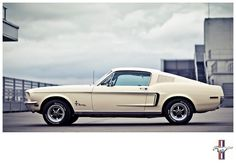 '68 Fastback-my husband will restore his one day