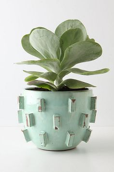 Blocked planter from Anthropologie.