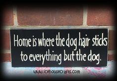 decor, anim, dog hair, true, hous, puppi, homes, hair sticks, little dogs