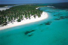 La Isla Saona ... Saona island is easy to reach by boat from Bayahibe beach near La Romana, Dominican Republic 2010