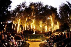 Evening wedding with lighting