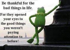 grateful for Kermit.