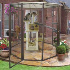 Outdoor cat enclosure<3