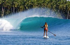 Stand Up Paddling in Paradise