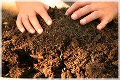 ¿Por qué crear compost casero?