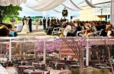 TN AQUARIUM - Chattanooga Wedding Venue
