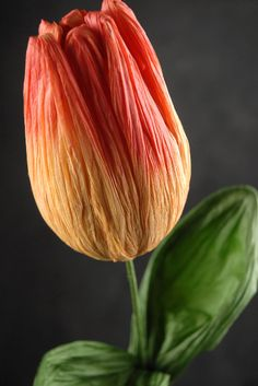 crepe paper flowers - tulip http://www.save-on-crafts.com/gianttulips.html
