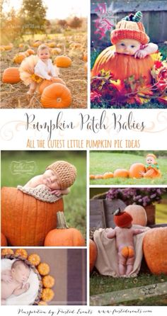 Pumpkin Patch Babies! The cutest most adorable ideas for taking pics of your little ones with pumpkins. #bestofpinterest #pumpkin