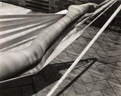 Edward Weston  Legs in hammock, Laguna, 1937
