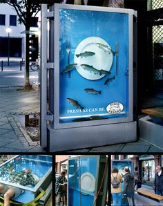 Fisch Franke – the Living poster Filled with Water and Real Fish
