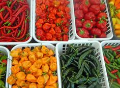 How to freeze sweet, bell and hot peppers (raw) from UNL Extension @bestfoodfacts
