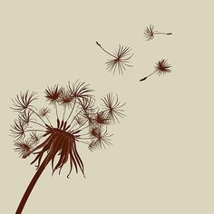 """I want a dandelion like this tattooed along my sided and curving around to my hip, with script saying """"My Soul is in the Sky"""" (a quote from Shakespeare)"""