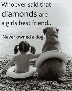Whoever said diamonds are a girl's best friend never owned a dog. #quotes
