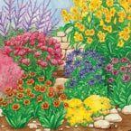 FlowersRoses on Pinterest Climbing Roses Pink Roses