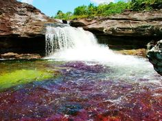 crystals, colombia, columbia, colors, blue green, crystal river, earth, rivers, rainbow