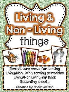 This Living and Non-Living Things unit includes 48 real picture cards - 24 living thing and 24 non-living things. All pictures come with and without picture labels. Students will sort the pictures into two categories. 2 versions of the sorting header cards are included. After they have sorted the pictures, students can write their answers on the recording sheets.  #livingandnonlivingthings #sheilamelton #tpt #science #education