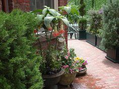 garden portfolio, garden tour, garden alon
